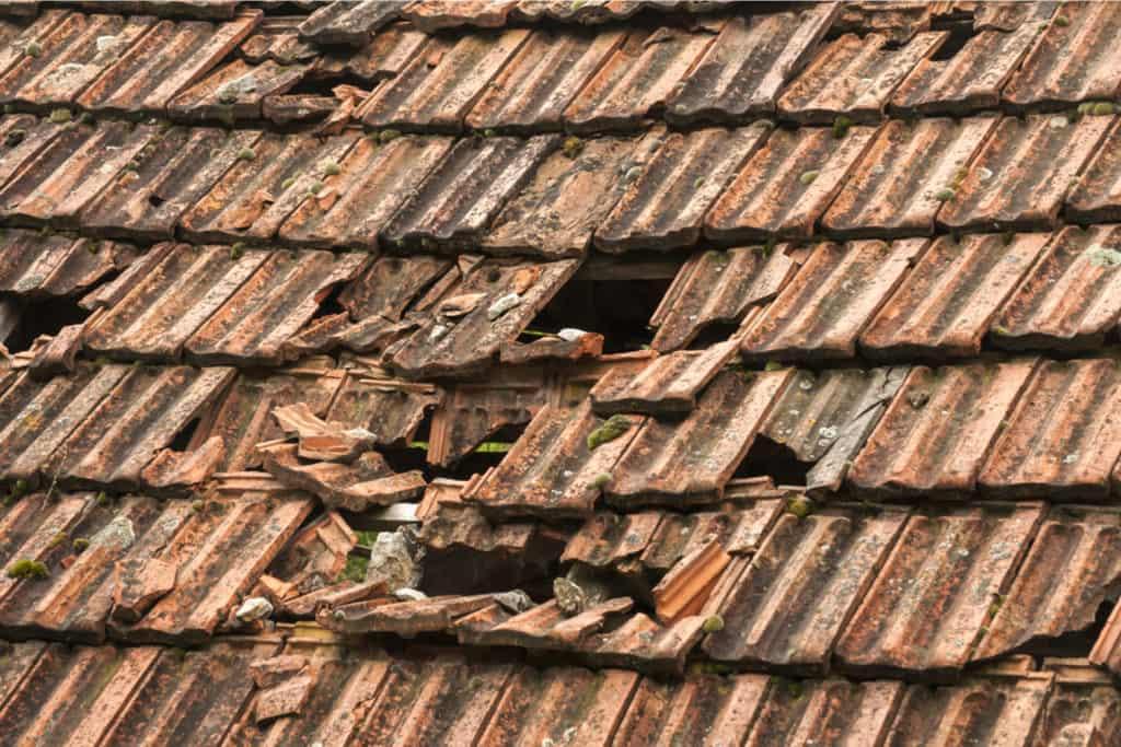 Broken Shingles Roof Repair Dallas DFW